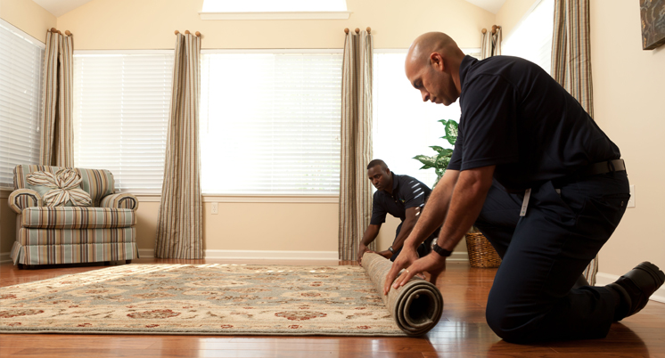 carpet cleaning marshalltown iowa